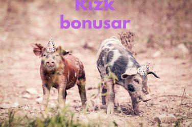 rizk bonusar